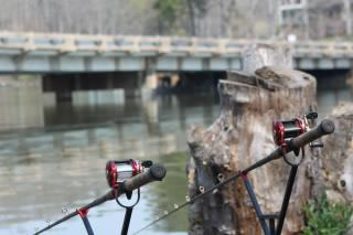 The Carolina Carp Cup will challenge paylakers' tactics and endurance on wild water. Euro-style anglers will be challenged by the close proximity fishing
