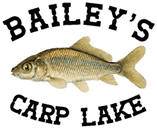 Bailey's Carp Lake