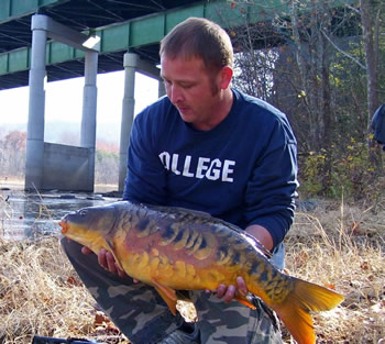 Wild Carp Club of the Virgunias Director Matt Perdue with a beautiful mirror carp